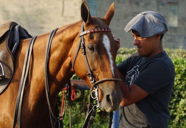 Homme en train de préparer son cheval