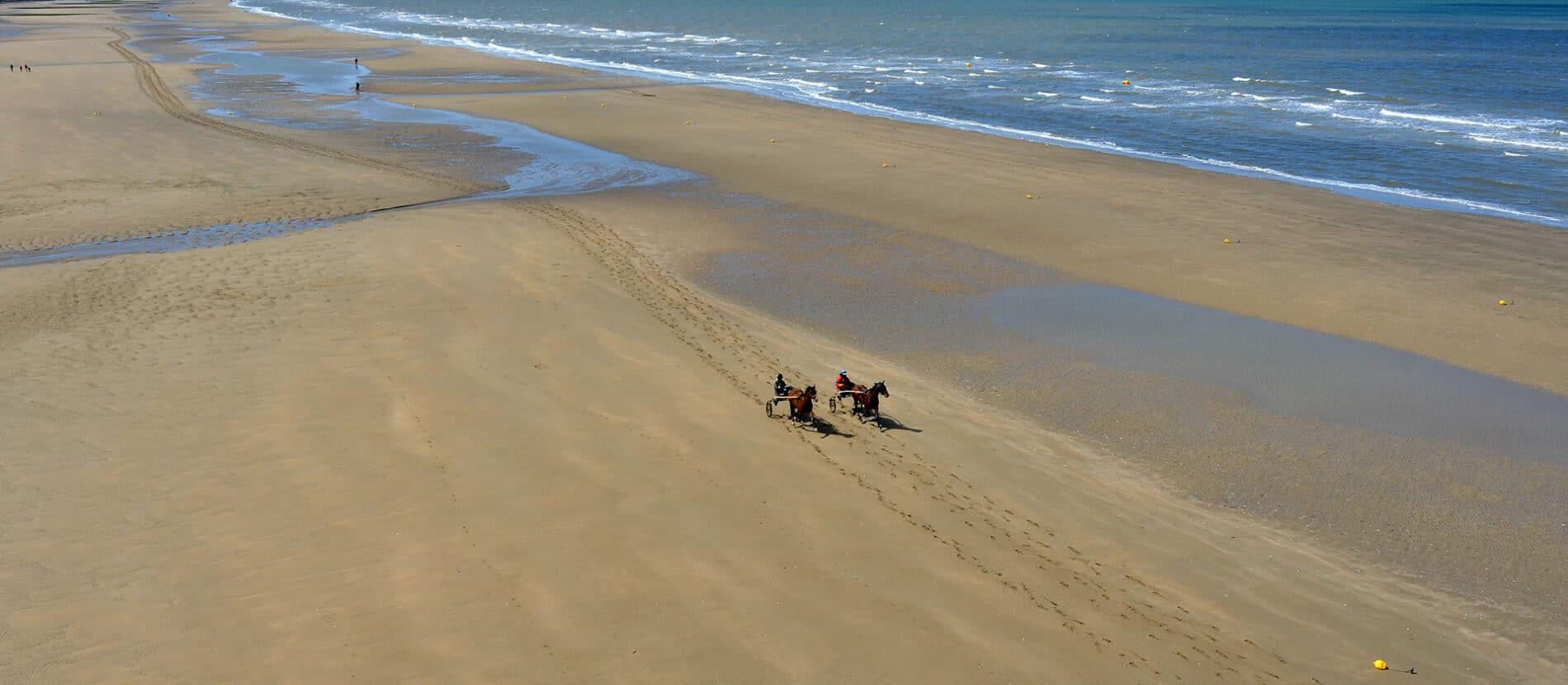 Sulky sur la plage de Blonville