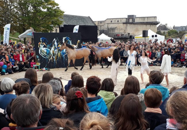 Spectacle en plein air de chevaux