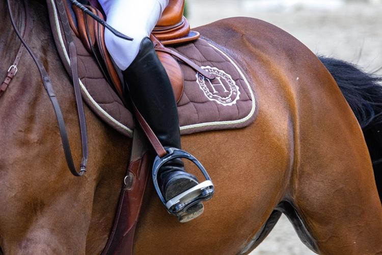 Equipement du cavalier sur le dos d'un cheval